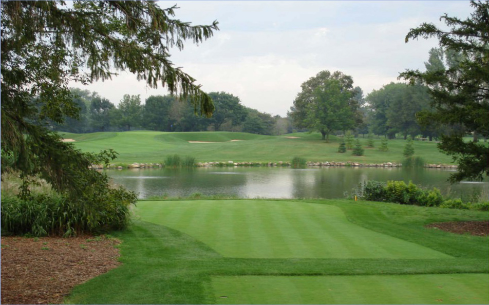 How to remove out of control algae in golf course ponds