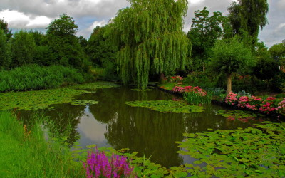 Why our pond cleaning process is environmentally friendly