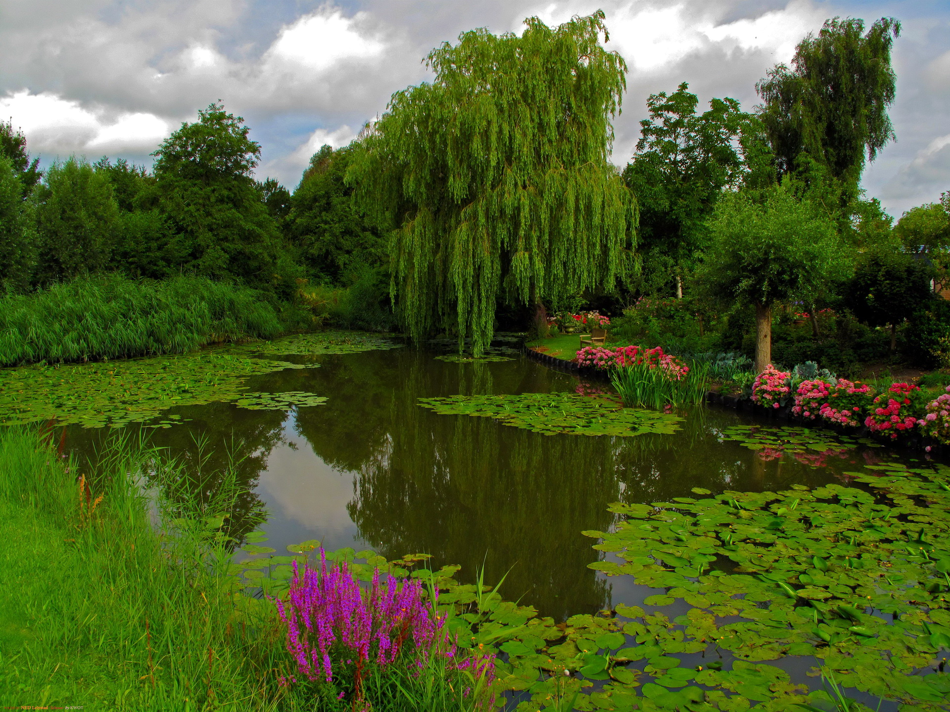 Why our pond cleaning process is environmentally friendly for Farm pond maintenance