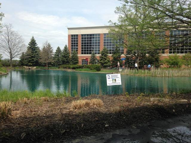 Pond cleaning at Chase Bank